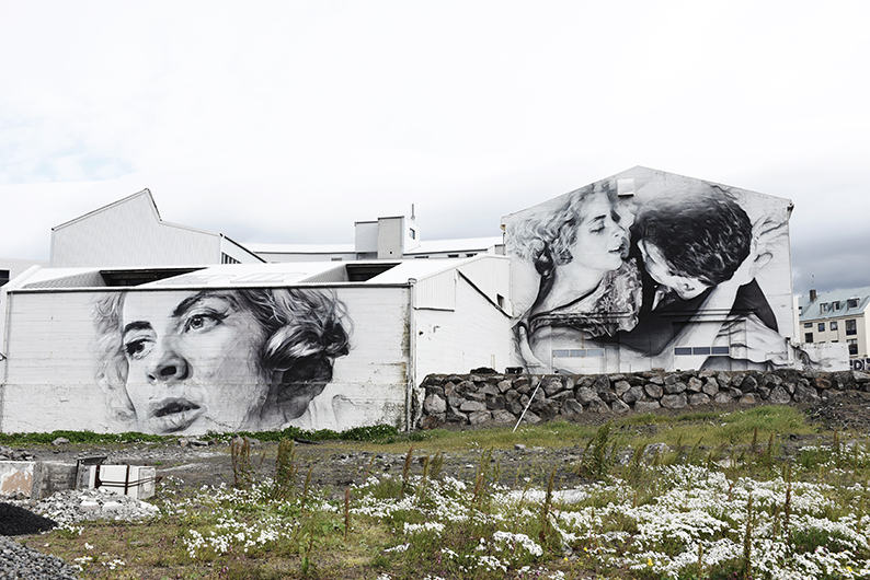 GALLERY OF THE STREETS OF REYKJAVIK